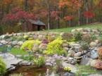 fall colors original