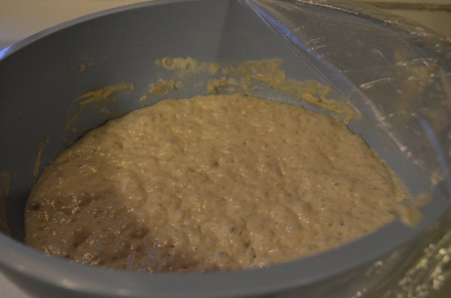 proofed dough (640x424)