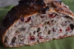 Cranberry Pecan No Knead Bread