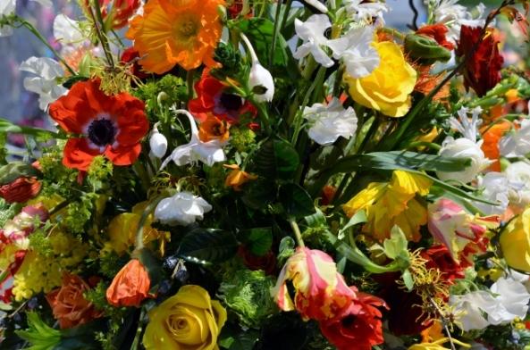 flower show 21 (640x424)