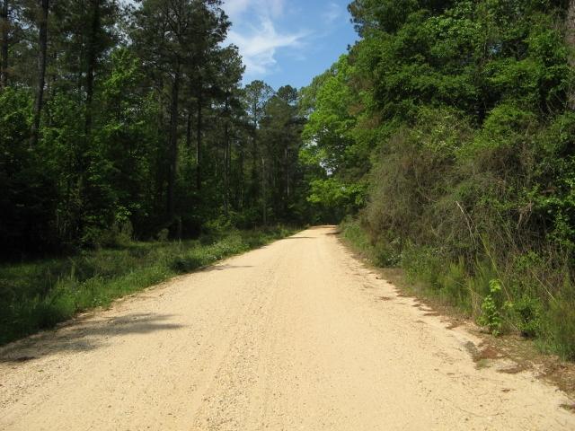 arkansas road (640x480)