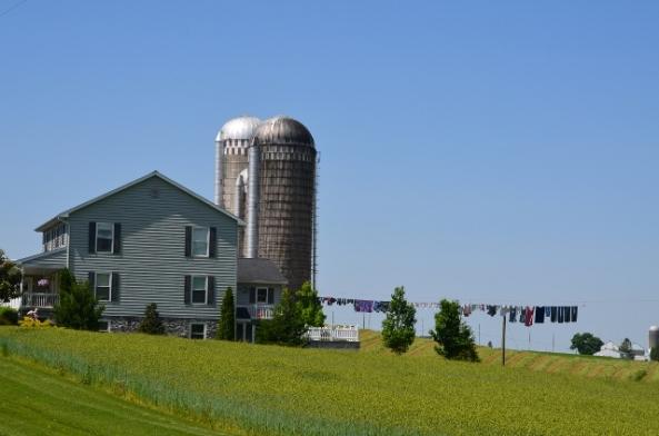 farm 2 (640x424)