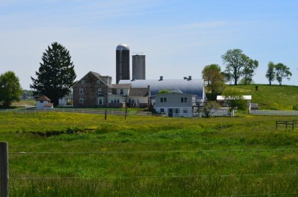 farm 4 (640x424)