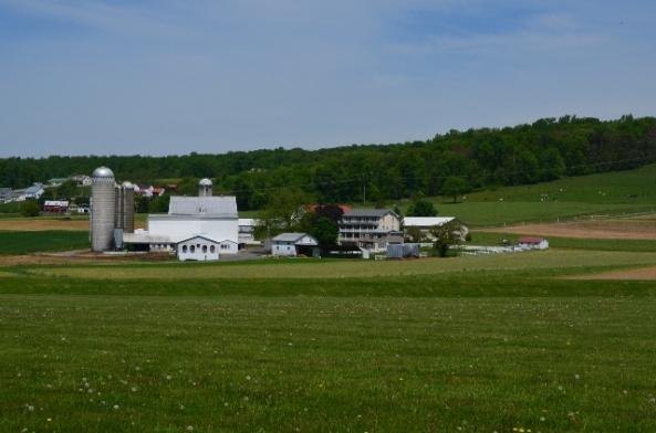 farm 6 (640x424)