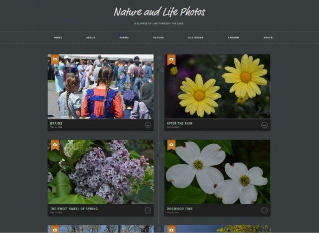 photo blog capture resized