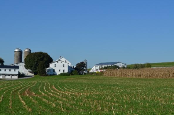 farm (640x424)