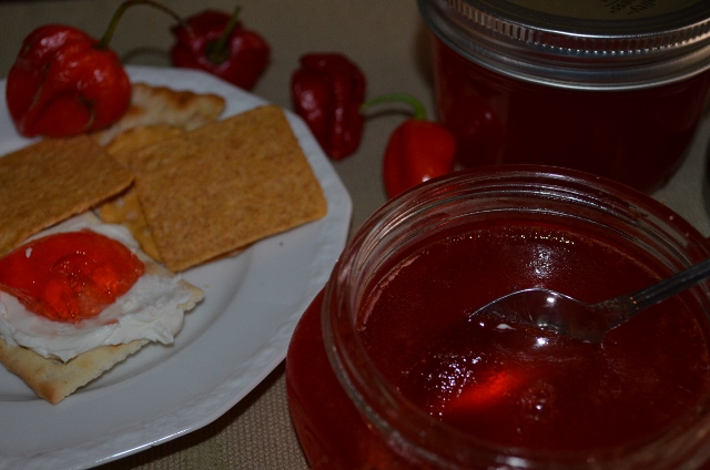 haberno jelly (640x424)