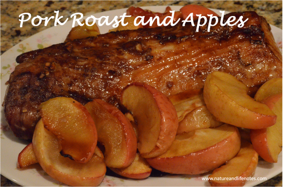 pork roast apples 3.jpg
